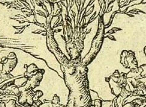 Ovidio e la Bibbia pagana degli antichi